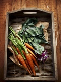 Carrots and Kohlrabi on a Wicker Tray Photographic Print by Maja Danica Pecanic