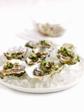 Marinated Oysters with Red Onions and Mint Photographic Print by Ian Garlick