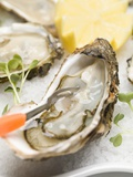Fresh Oysters with Cress and Lemon Photographic Print