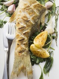 Fried Sea Bass with Herbs, Garlic and Lemon Photographic Print