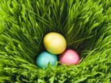 Three Easter Eggs in Grass Photographic Print