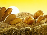 Stylised Landscape in Bread and Cereals Photographic Print