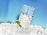 Tumbler with Crushed Ice and Lemon Balm Photographic Print