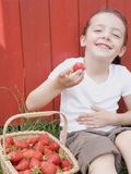 Little Girl Eating Strawberries Photographic Print