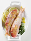 Red Mullet with Lemon Sauce and Thyme Photographic Print