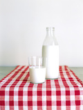 Glass and Bottle of Milk on Red and White Checked Fabric Photographic Print by Joerg Lehmann