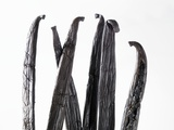 Several Vanilla Pods Photographic Print
