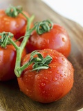 Rinsed Tomatoes with Water Droplets Photographic Print by Clara Gonzalez