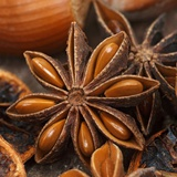 Star Anise Photographic Print by Chris Schäfer