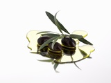 Black Olives and Olive Sprig in Olive Oil Photographic Print by Karl Newedel