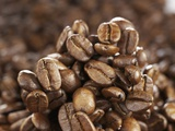 Coffee Beans Photographic Print by Karl Newedel