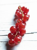 A Bunch of Redcurrants Photographic Print by Brigitte Wegner