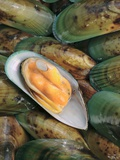 New Zealand Mussels Photographic Print by Vladimir Shulevsky