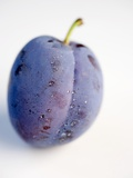 A Plum with Drops of Water Photographic Print