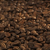 Coffee Beans Photographic Print by Alexander Feig