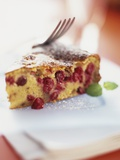 A Piece of Cranberry Cake Photographic Print by Ian Garlick