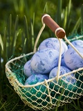 Blue Easter Eggs in Wire Basket Photographic Print by Martina Schindler