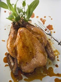 Roast Chicken with Fresh Herbs Photographic Print