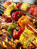 Vegetable Kebabs on Barbecue Photographic Print by Paul Williams