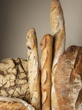 Assorted Loaves of Bread and Baguettes Photographic Print by Joerg Lehmann