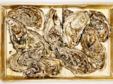 Fresh Oysters in Crate Photographic Print by  Kröger & Gross