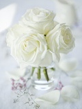 A Bunch of White Roses in a Glass Vase Photographic Print by Ira Leoni