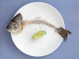 Fish Bones with Head and Tail on Plate Photographic Print by Amélie Roche