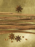 Christmas Spices (Cinnamon Sticks and Star Anise) Photographic Print by Achim Sass