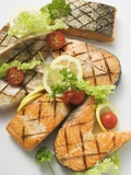 Grilled Cutlets and Fillets of Salmon and Cod Photographic Print