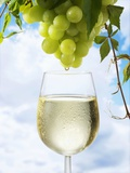 White Wine Dripping from Grapes into a Wine Glass Lámina fotográfica por Paul Williams