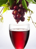 Red Wine Dripping from Grapes into a Wine Glass Photographic Print by Paul Williams