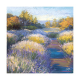 Lavendar 2 Giclee Print by Amanda Houston