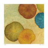 Sienna Lake 1 Limited Edition by Lynn Basa