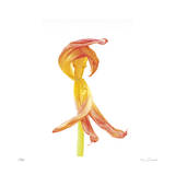 Orange Tulip No 3 Giclee Print by Shams Rasheed