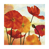 Poppy Variation 2 ジクレープリント : エリーズ・レメンデル