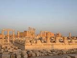 Sanctuary of Nabu, Palmyra, Syria Photographic Print by Manuel Cohen