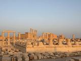 Sanctuary of Nabu, Palmyra, Syria Photographic Print by Manuel Cohen