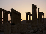 Great Colonnade, Palmyra, Syria Photographic Print by Manuel Cohen