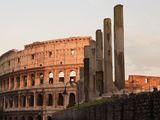 Colosseum, Rome, Italy Photographic Print by Manuel Cohen