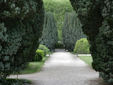 Jardin des Plantes (Botanical Gardens), Paris, 5th arrondissement, France Photographic Print by Manuel Cohen