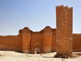 Ummayades' castle, Qasr al-Hayr al-Sharqi, Syria Photographic Print by Manuel Cohen