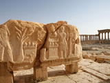 Archaeological site of Palmyra, Syria Photographic Print by Manuel Cohen