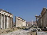 Apamea, Syria Photographic Print by Manuel Cohen