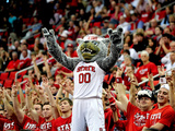 North Carolina State Wolfpack vs Stanford Cardinal - Mr. Wuf, Mascot: North Carolina, Dec. 18, 2012 Fotografisk tryk