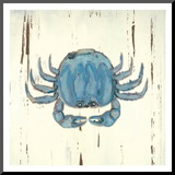 Blue Crab Mounted Print by Grace Pullen