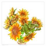 Sunflowers Art by Richard Reynolds