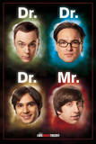 The Big Bang Theory (Dr Mr) Affiche