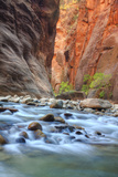 Virgin Narrows Portrait in Autumn Photographic Print by Vincent James