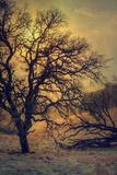 Diablo Sun Mood Photographic Print by Vincent James
