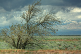 Stormy Scene Outside Lancaster Photographic Print by Vincent James